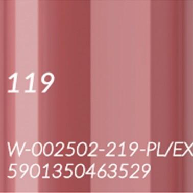 119 RUDY BRĄZ